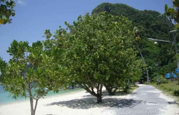 фотографии Phi Phi Sand Sea View Resort изображение №16