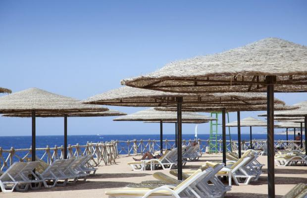 фотографии Coral Beach Resort Tiran (ex. Coral Beach Tiran Rotana Resort) изображение №16