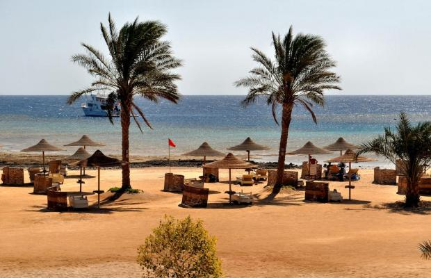 фото Paradise Club Shoni Bay Resort (ex. Royal Resort Marsa Alam) изображение №38