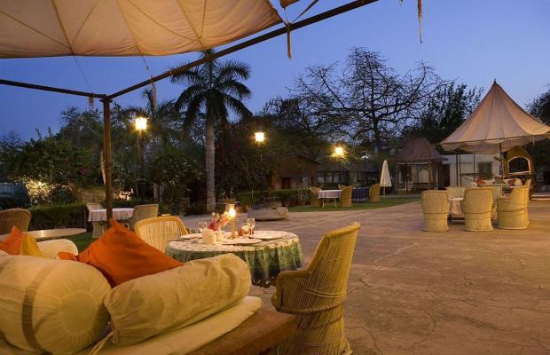 фотографии отеля Naila Bagh Palace Heritage Home Hotel изображение №39