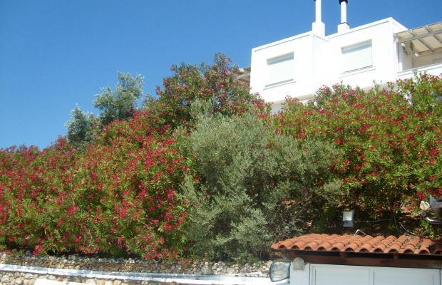 фотографии Villa Ariadni изображение №8