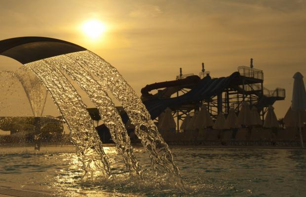 фотографии Louis Phaethon Beach изображение №36