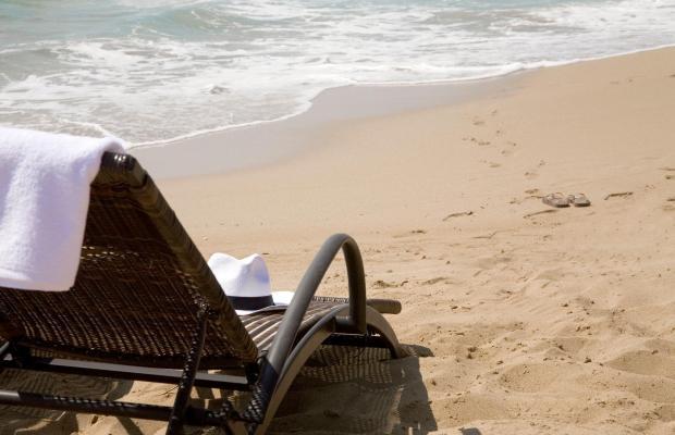 фотографии Venus Beach Hotel изображение №32