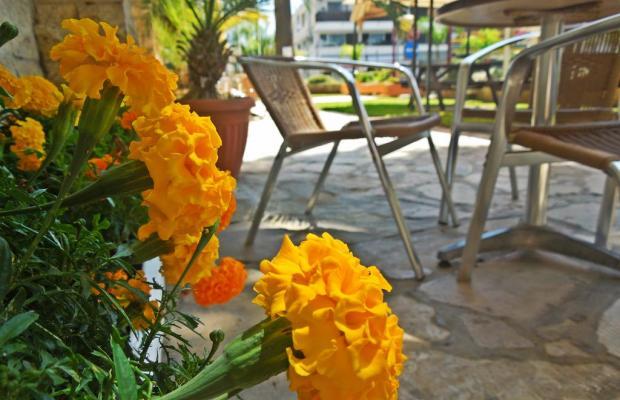 фотографии отеля Estella Hotel and Apartments изображение №19
