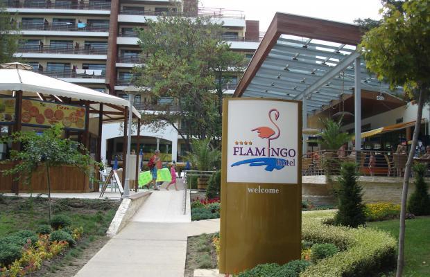 фотографии Flamingo (ex. Praga) изображение №36