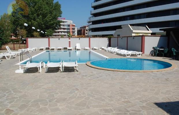 фотографии отеля Palm Court изображение №3