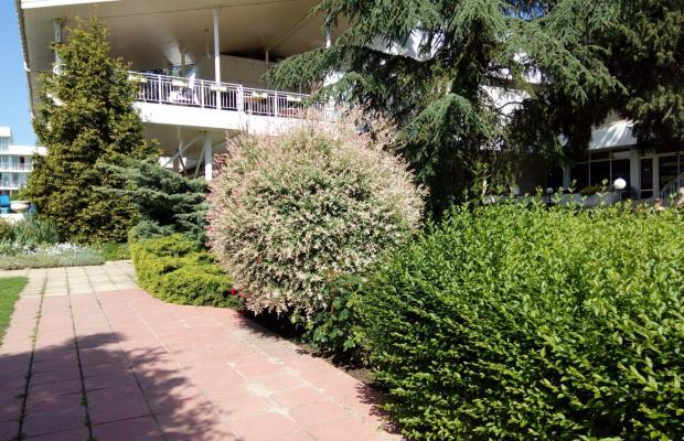 фотографии отеля Sandy Beach (ex. Orlov) изображение №3