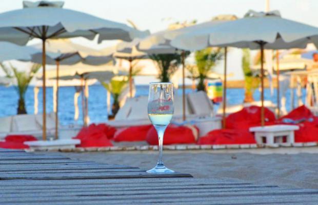 фотографии отеля Oasis Resort & Spa изображение №15