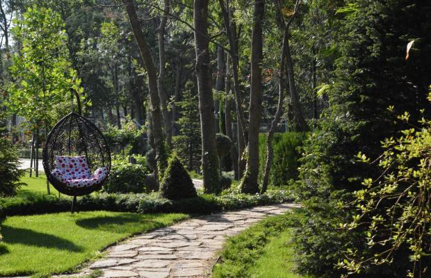 фото Oasis Resort & Spa изображение №2