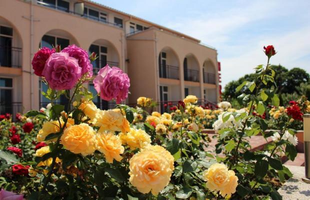 фото отеля Hera изображение №9