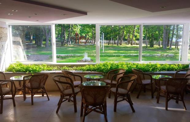 фотографии отеля Park Hotel Atliman Beach (ex. Edinstvo) изображение №27
