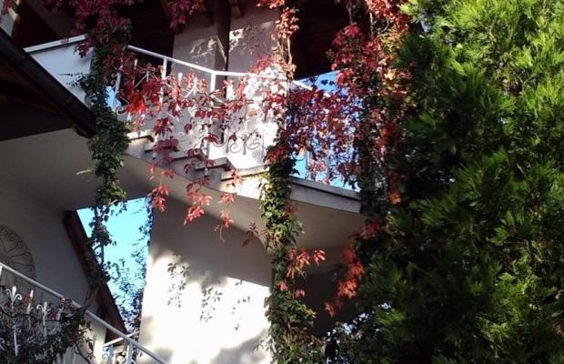фото Park Hotel Amfora (Парк Хотел Амфора) изображение №6
