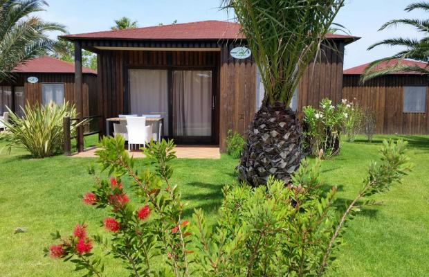 фото отеля Camping El Delfin Verde изображение №33