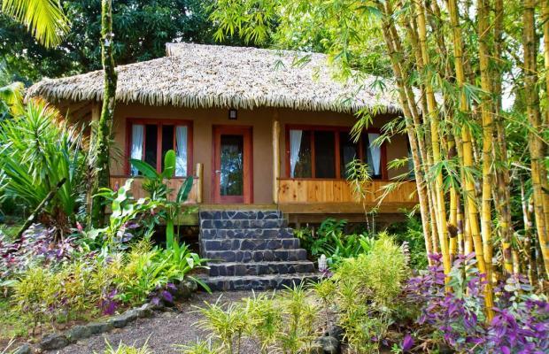 фото Copa De Arbol Beach & Rainforest Resort изображение №42
