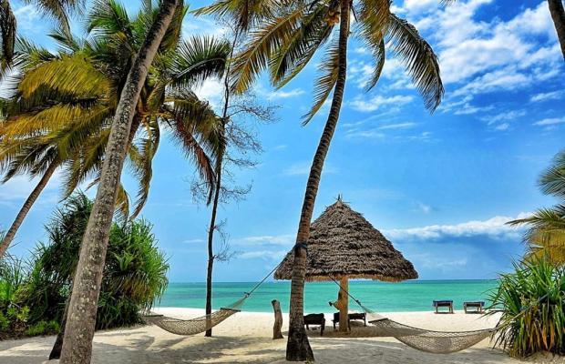 фотографии Pongwe Beach изображение №16