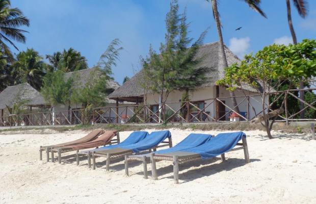 фотографии Reef & Beach Resort изображение №12