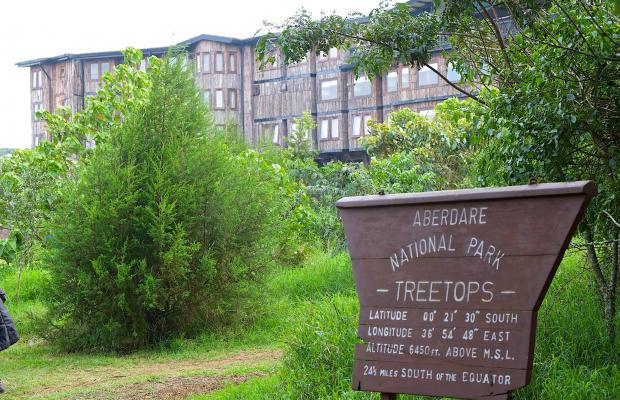 фотографии отеля Treetops изображение №19