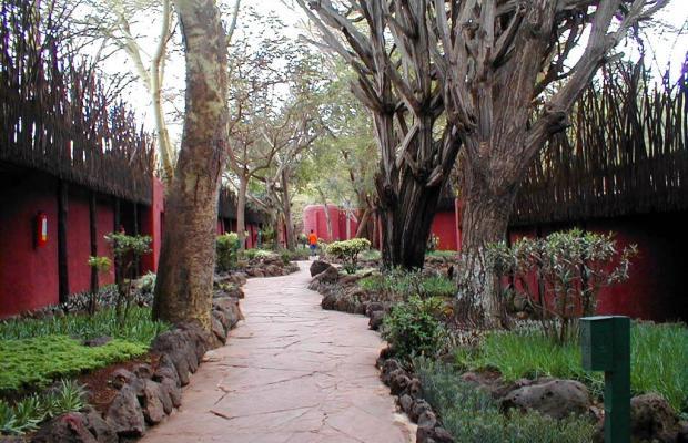 фотографии отеля Amboseli Serena Safari Lodge изображение №15