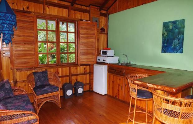 фотографии отеля Ciudad Perdida Ecolodge изображение №15