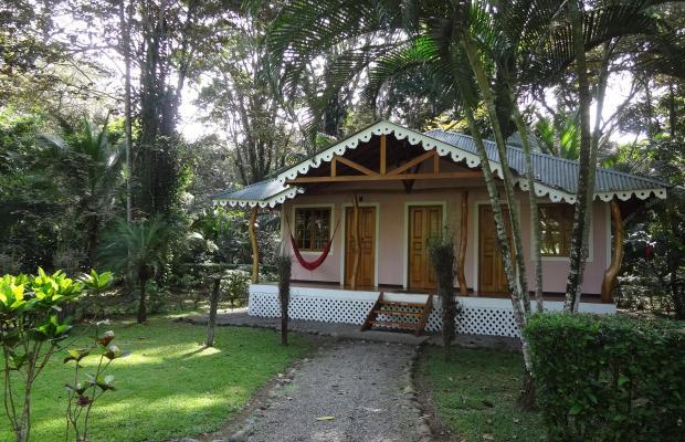 фотографии отеля Ciudad Perdida Ecolodge изображение №3