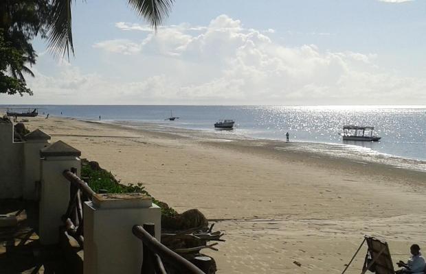 фотографии отеля Plaza Beach изображение №7