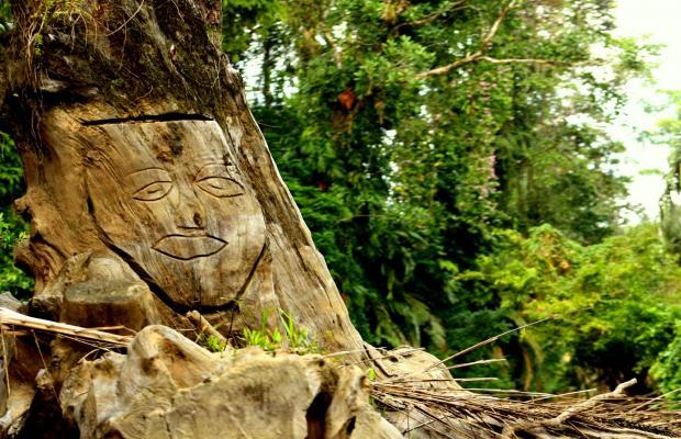фото ilan-ilan Trails & Lodge изображение №10