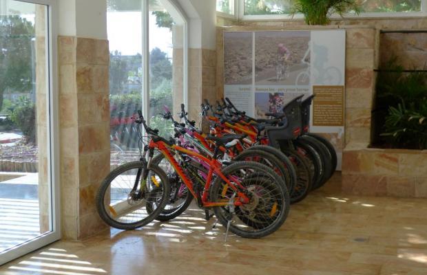 фото отеля Isrotel Ramon Inn Hotel изображение №9