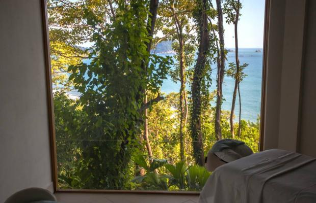 фотографии Arenas del Mar Beachfront & Rainforest Resort изображение №28