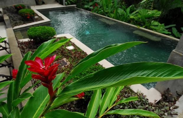 фотографии Buena Vista Luxury Villas изображение №52