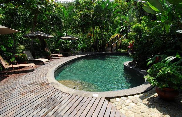 фотографии Buena Vista Luxury Villas изображение №40