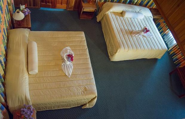 фотографии отеля Hotel Heliconia изображение №91