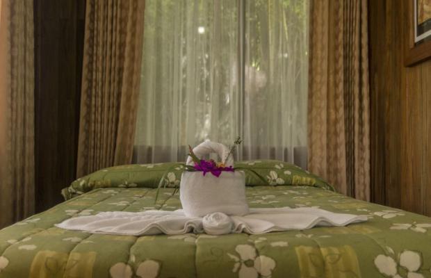 фотографии Hotel Heliconia изображение №40