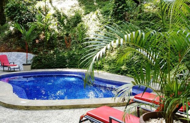 фото отеля Casa Corcovado Jungle Lodge изображение №85