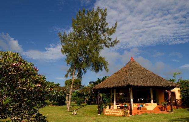 фотографии отеля Tijara Beach изображение №11