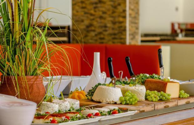 фотографии отеля Club Hotel Tiberiah изображение №31