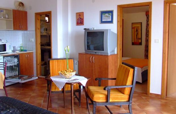 фото отеля Niksa Radenovic изображение №9