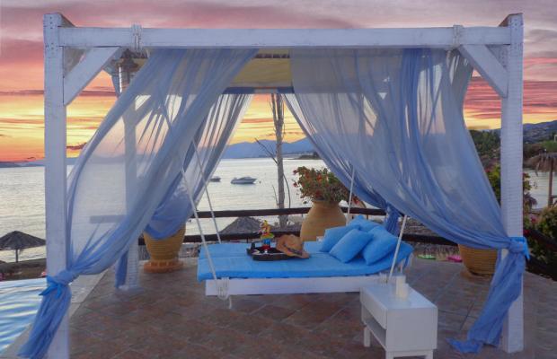 фотографии Venus Beach изображение №12