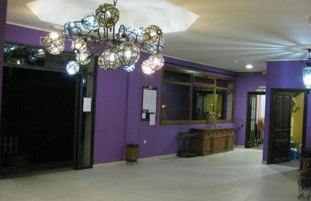 фотографии отеля Los Acebos de Arriondas изображение №19