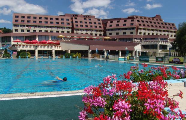 фото отеля Minerva изображение №9