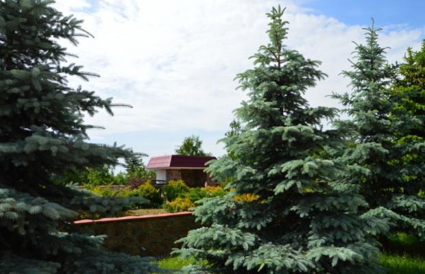 фотографии отеля имени С.М. Кирова (imeni S.M. Kirova) изображение №35