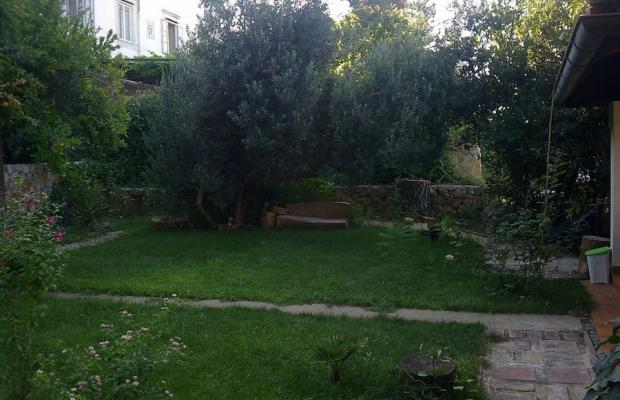 фотографии Villa Busovina изображение №16