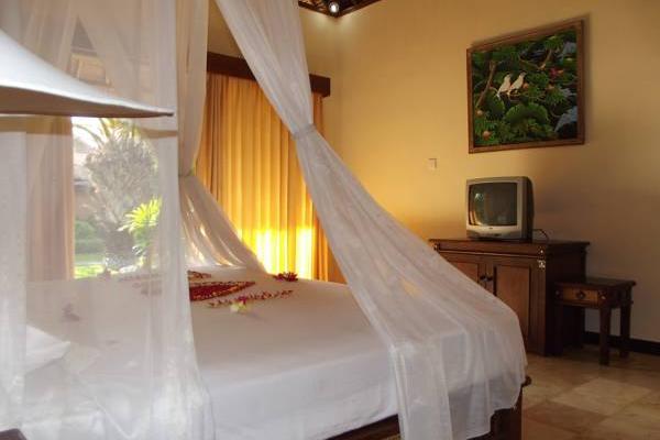 фото отеля Aneka Bagus Resort (Pemuteran Beach) изображение №9