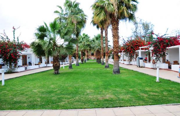 фотографии Dessole Seti Sharm Resort изображение №16