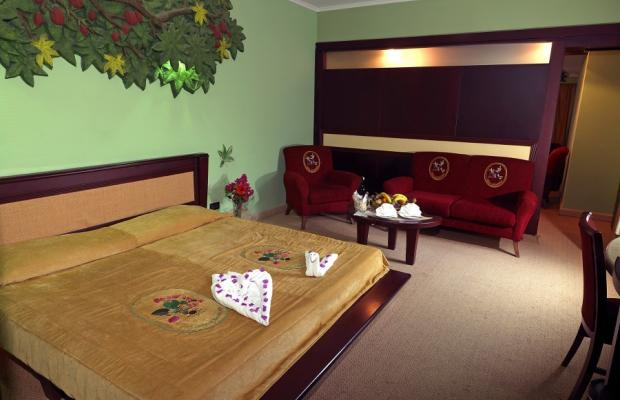 фото Holiday Area Green Resort (ex. Naturland Forest Resort ) изображение №26