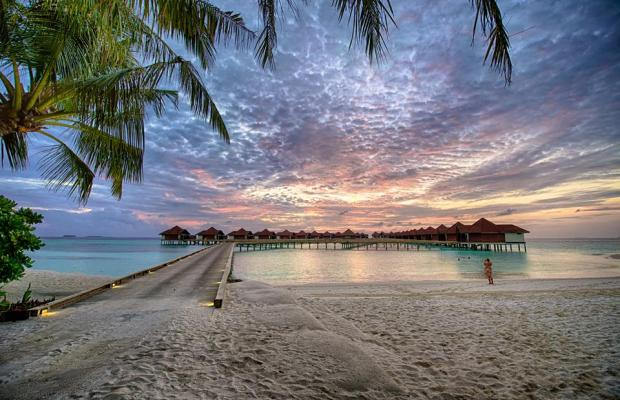 фотографии Robinson Club Maldives изображение №12
