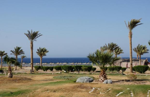 фото Nada Marsa Alam Resort (ex. Creative Al-Nada Resort) изображение №18