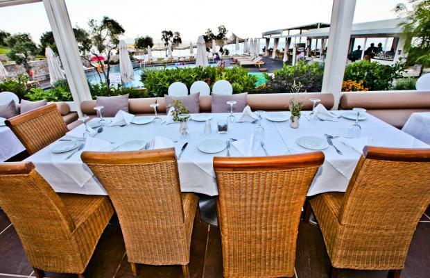 фото отеля Kassandra Bay Resort изображение №81