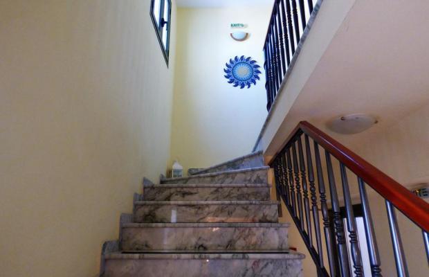 фотографии отеля Dolphins Apartments & Rooms изображение №19
