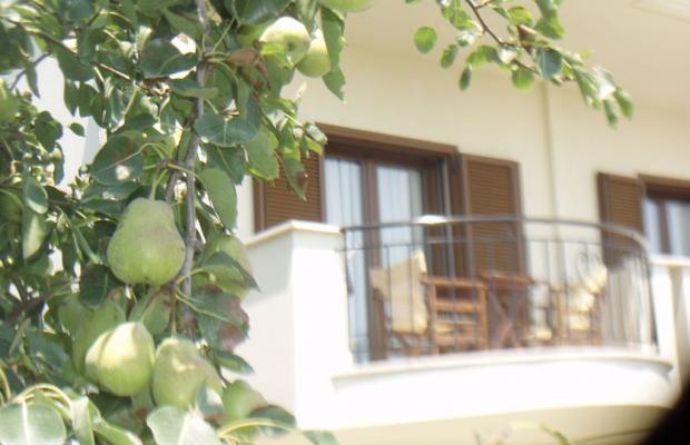 фотографии Aegean Blue Studios изображение №8