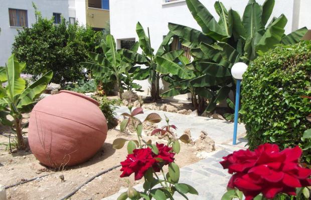 фотографии Kefalonitis Hotel Apartments изображение №28